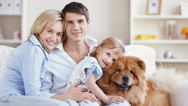 Wills & Trusts dog-young-family Direct Wills Ilfracombe